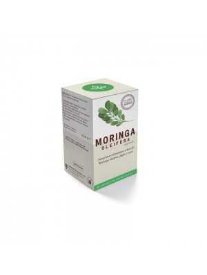 Vivi Moringa – Moringa...
