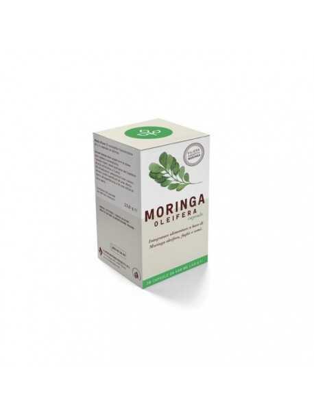 Vivi Moringa – Moringa Oleifera në kapsula